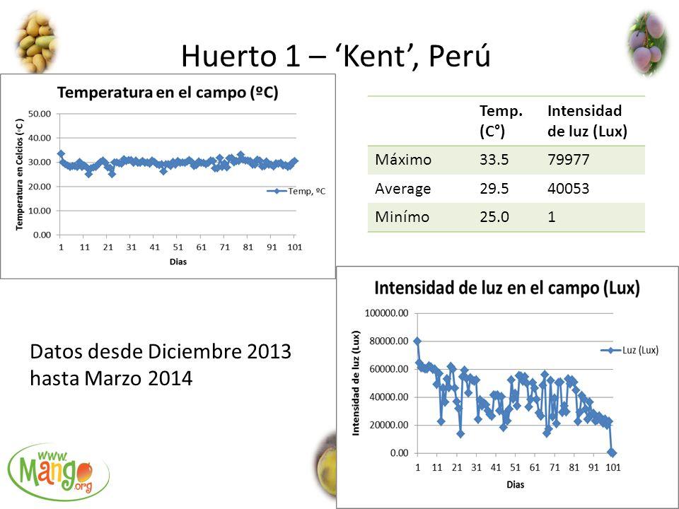 Huerto 1 – 'Kent', Perú Datos desde Diciembre 2013 hasta Marzo 2014