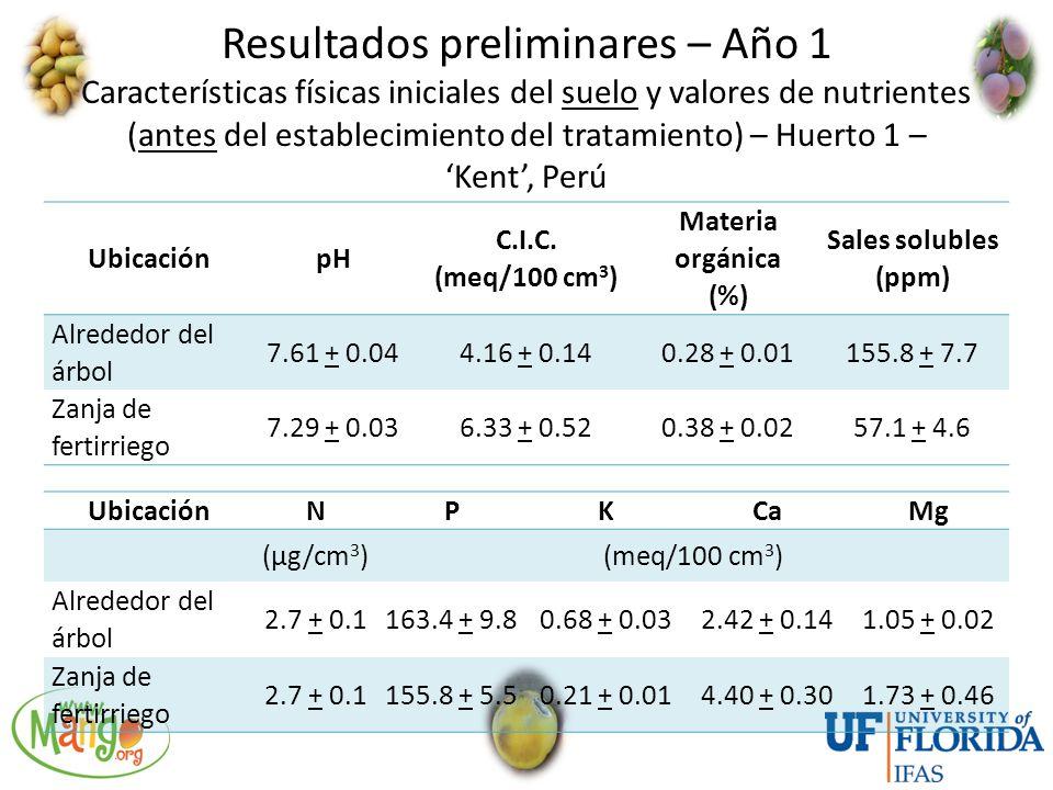 Resultados preliminares – Año 1 Características físicas iniciales del suelo y valores de nutrientes (antes del establecimiento del tratamiento) – Huerto 1 – 'Kent', Perú