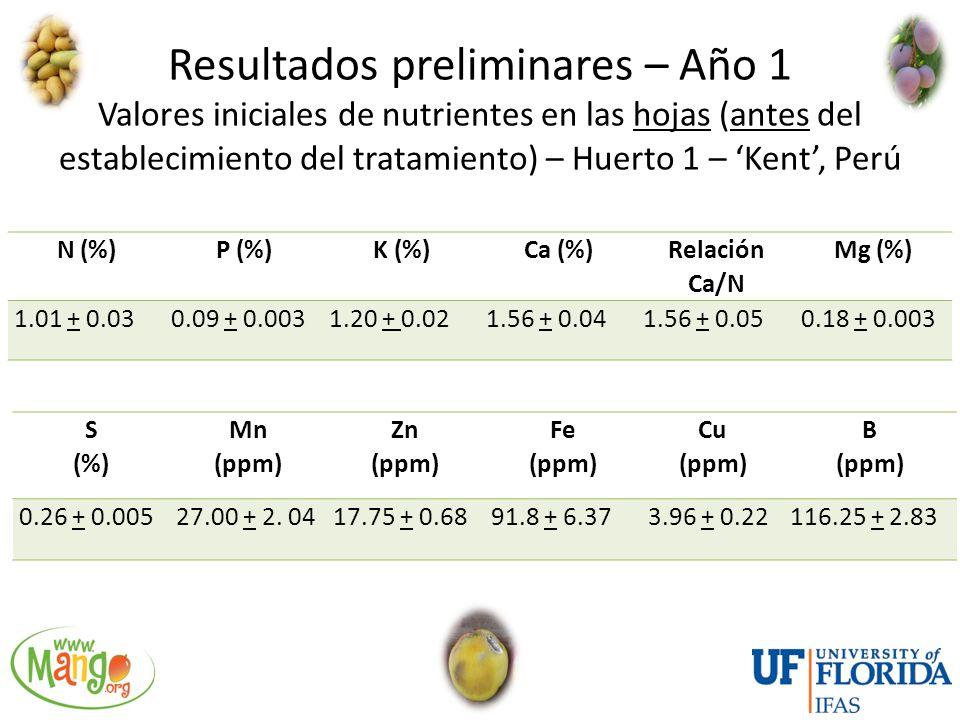 Resultados preliminares – Año 1 Valores iniciales de nutrientes en las hojas (antes del establecimiento del tratamiento) – Huerto 1 – 'Kent', Perú