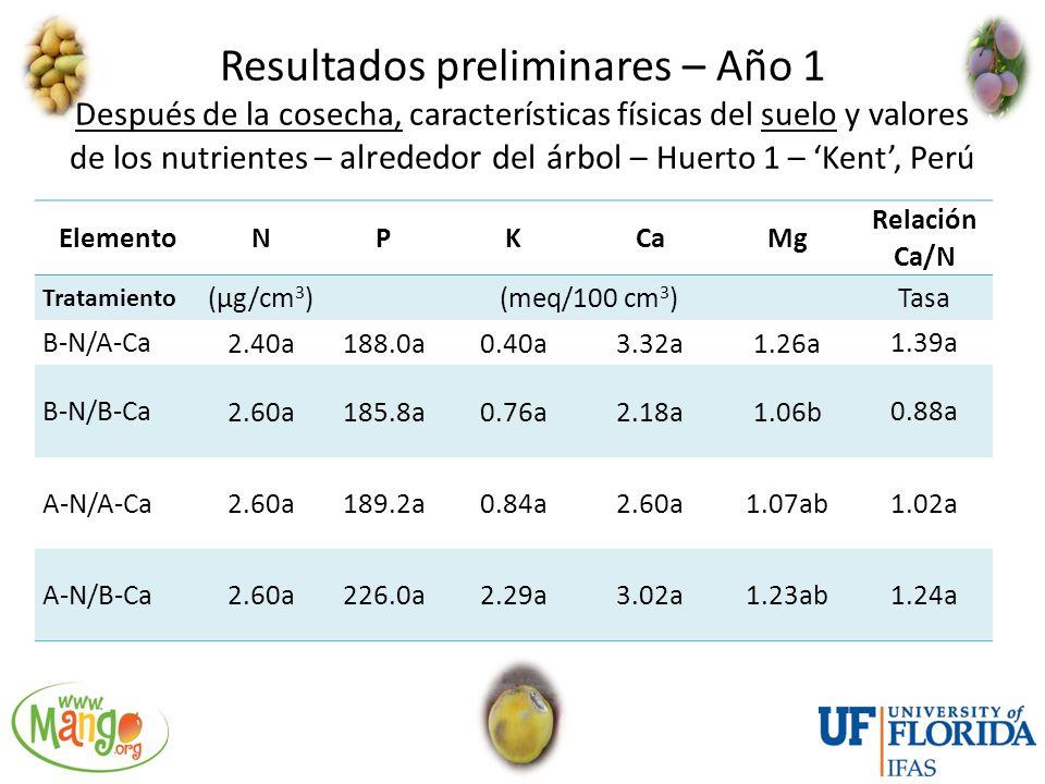 Resultados preliminares – Año 1 Después de la cosecha, características físicas del suelo y valores de los nutrientes – alrededor del árbol – Huerto 1 – 'Kent', Perú