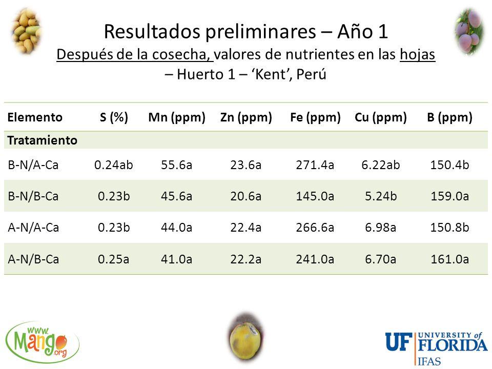 Resultados preliminares – Año 1 Después de la cosecha, valores de nutrientes en las hojas – Huerto 1 – 'Kent', Perú
