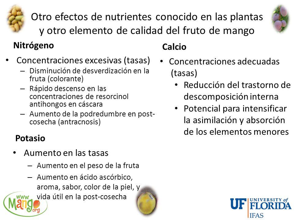 Otro efectos de nutrientes conocido en las plantas y otro elemento de calidad del fruto de mango