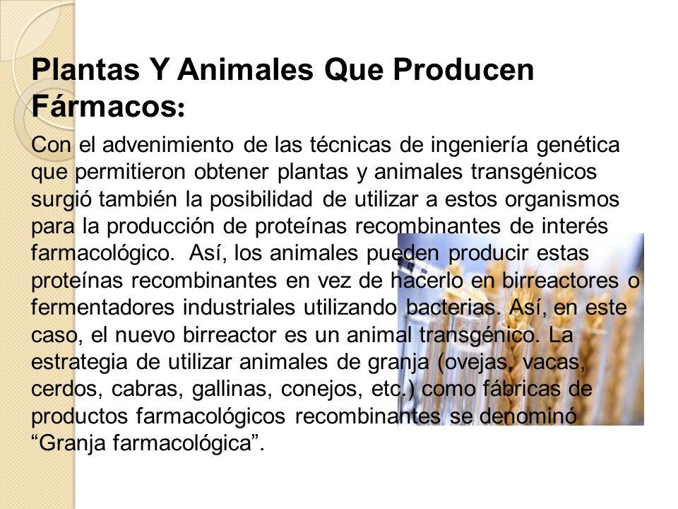 Plantas Y Animales Que Producen Fármacos: