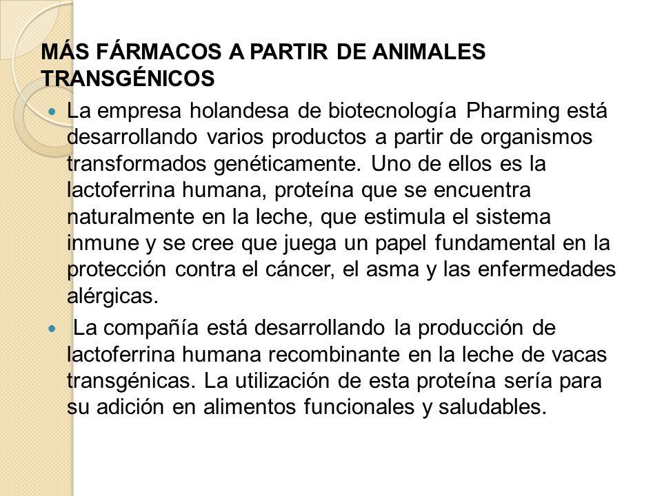 MÁS FÁRMACOS A PARTIR DE ANIMALES TRANSGÉNICOS