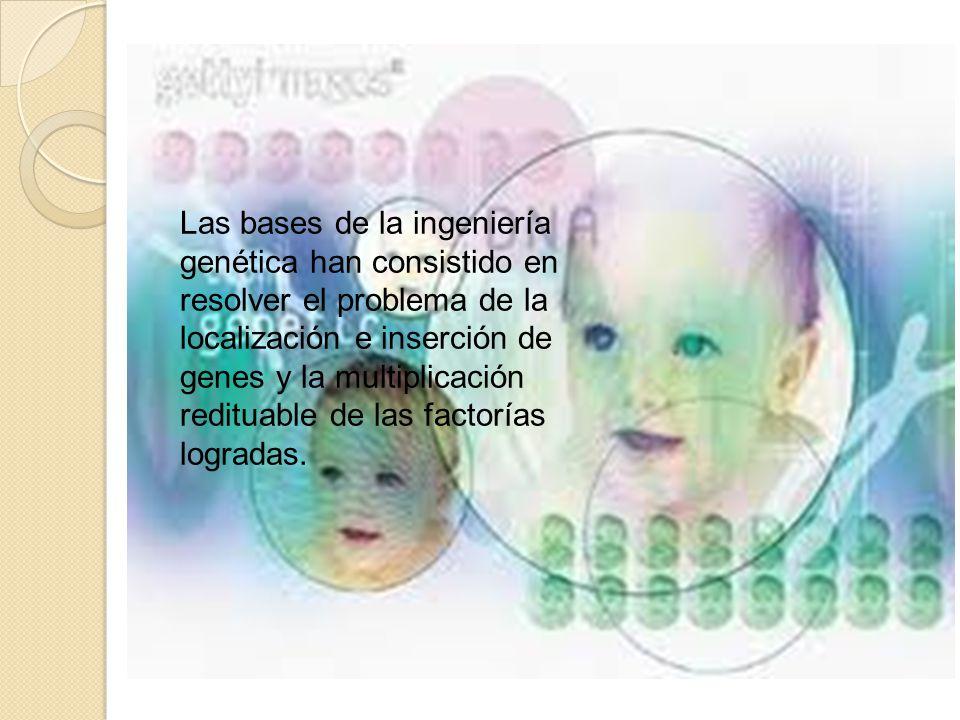 Las bases de la ingeniería genética han consistido en resolver el problema de la localización e inserción de genes y la multiplicación redituable de las factorías logradas.