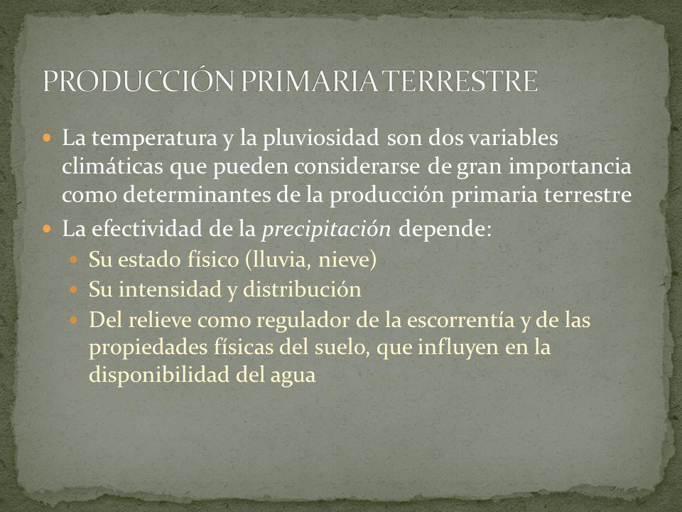 PRODUCCIÓN PRIMARIA TERRESTRE