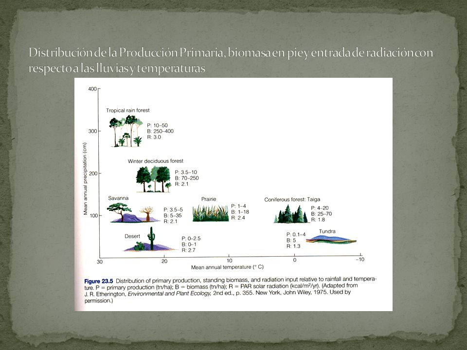 Distribución de la Producción Primaria, biomasa en pie y entrada de radiación con respecto a las lluvias y temperaturas