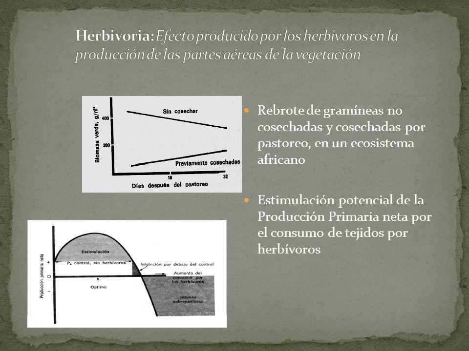Herbivoria: Efecto producido por los herbívoros en la producción de las partes aéreas de la vegetación