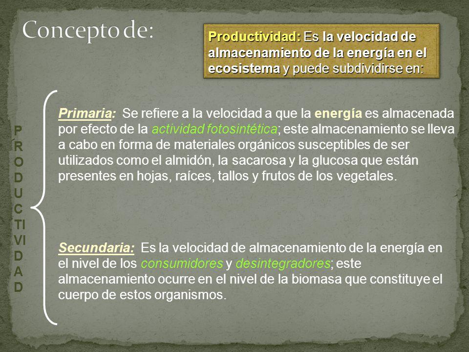 Concepto de: Productividad: Es la velocidad de almacenamiento de la energía en el ecosistema y puede subdividirse en: