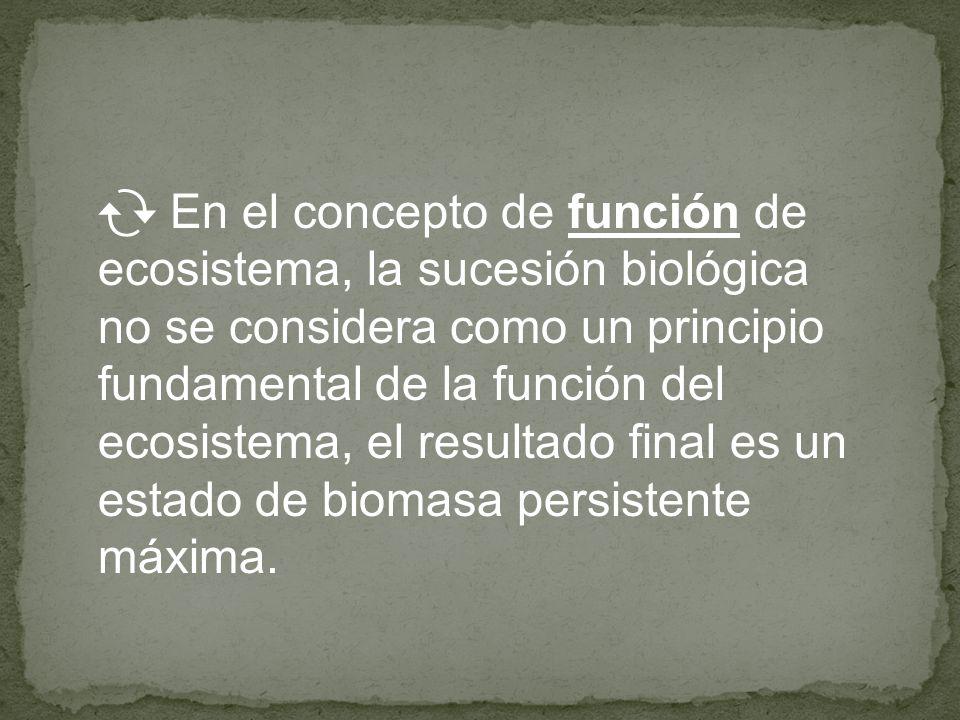En el concepto de función de ecosistema, la sucesión biológica no se considera como un principio fundamental de la función del ecosistema, el resultado final es un estado de biomasa persistente máxima.