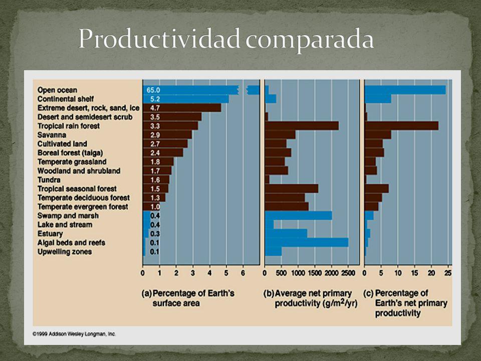 Productividad comparada