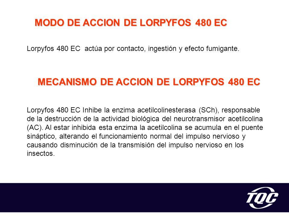 MODO DE ACCION DE LORPYFOS 480 EC