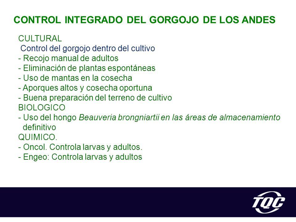 CONTROL INTEGRADO DEL GORGOJO DE LOS ANDES