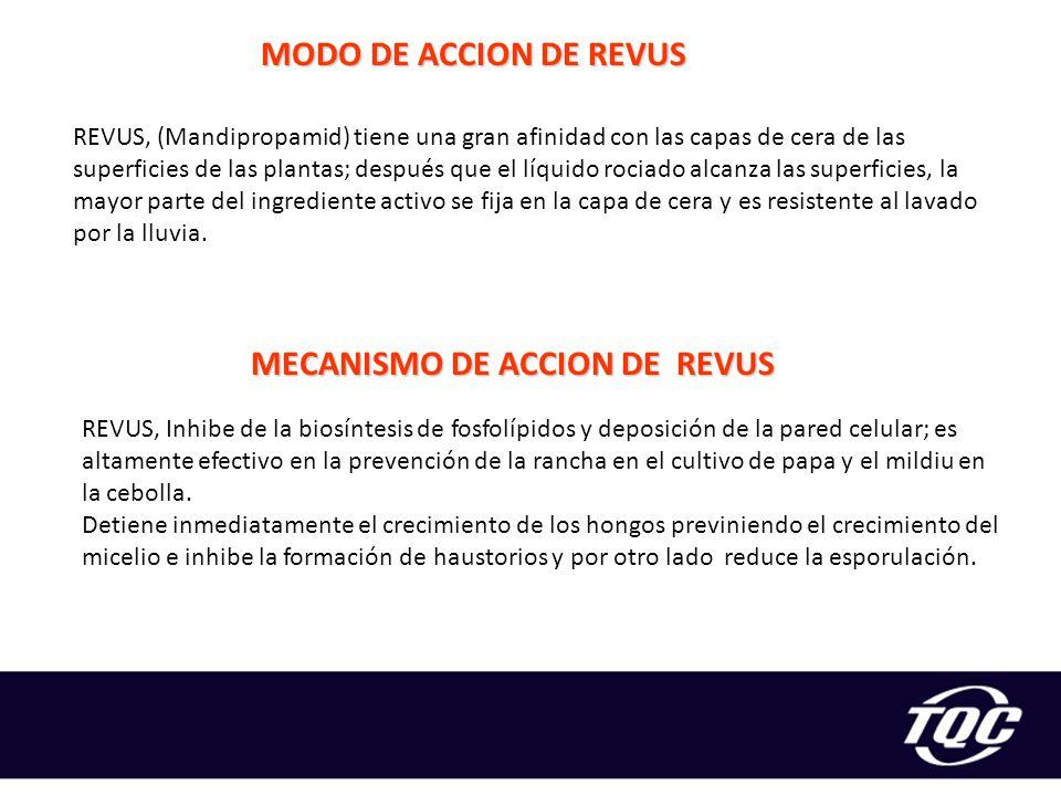 MECANISMO DE ACCION DE REVUS