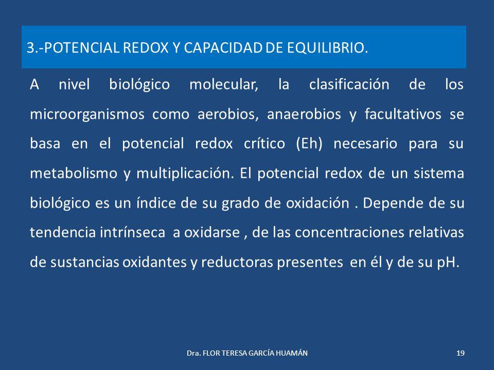 3.-POTENCIAL REDOX Y CAPACIDAD DE EQUILIBRIO.