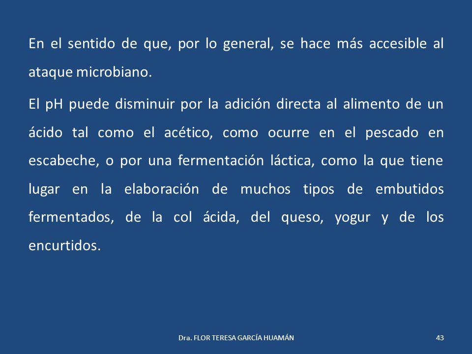 Dra. FLOR TERESA GARCÍA HUAMÁN