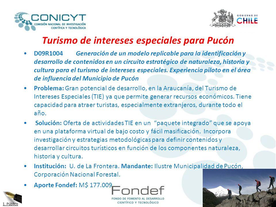 Turismo de intereses especiales para Pucón