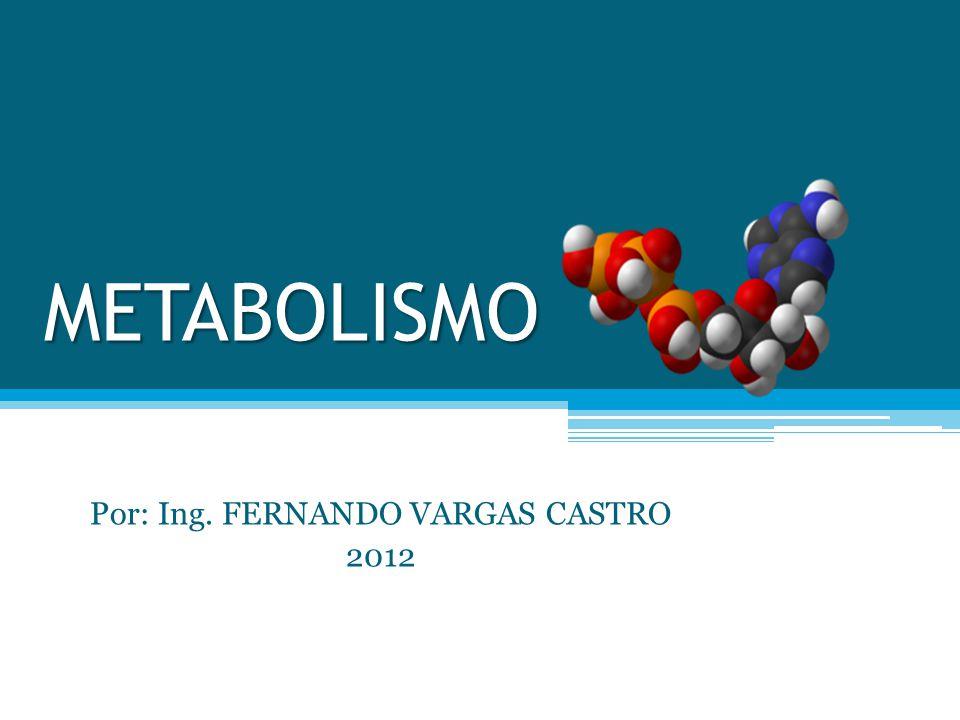 Por: Ing. FERNANDO VARGAS CASTRO 2012
