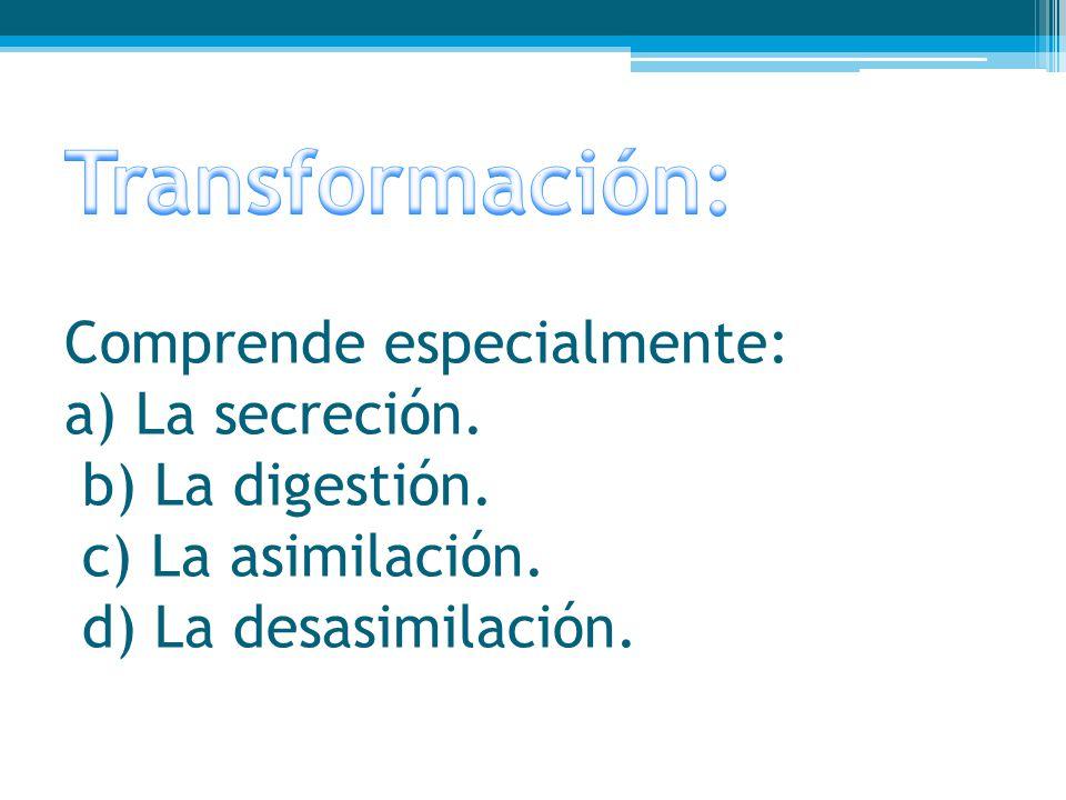 Transformación: Comprende especialmente: a) La secreción