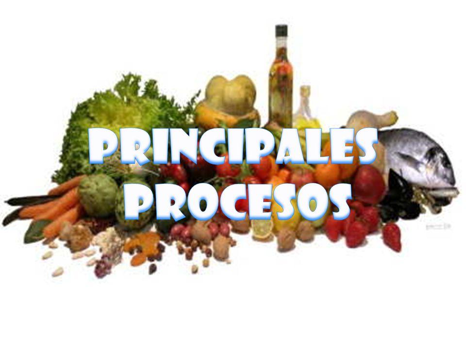 PRINCIPALES PROCESOS