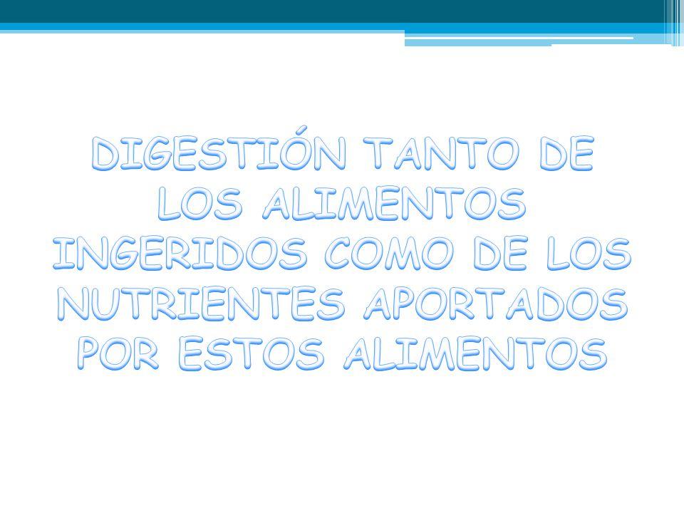 DIGESTIÓN TANTO DE LOS ALIMENTOS INGERIDOS COMO DE LOS NUTRIENTES APORTADOS POR ESTOS ALIMENTOS