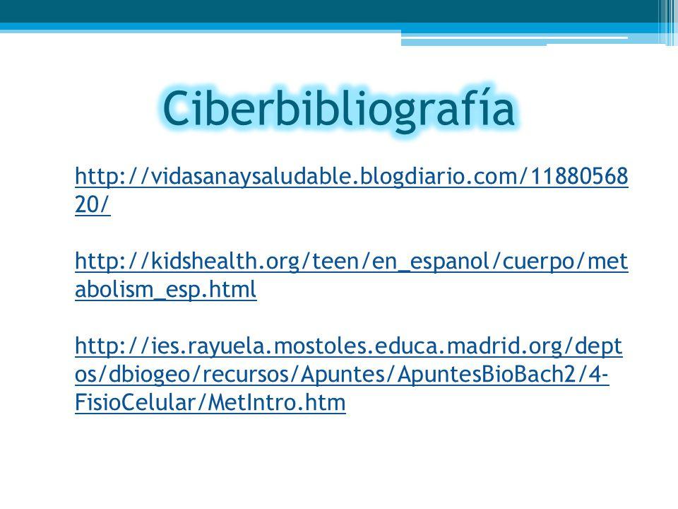 Ciberbibliografía