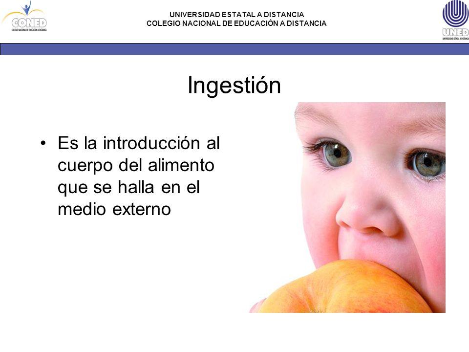 Ingestión Es la introducción al cuerpo del alimento que se halla en el medio externo