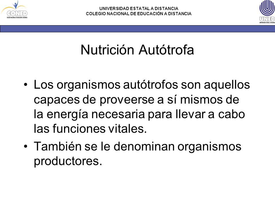 Nutrición Autótrofa