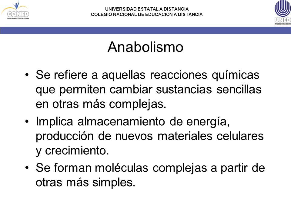 Anabolismo Se refiere a aquellas reacciones químicas que permiten cambiar sustancias sencillas en otras más complejas.