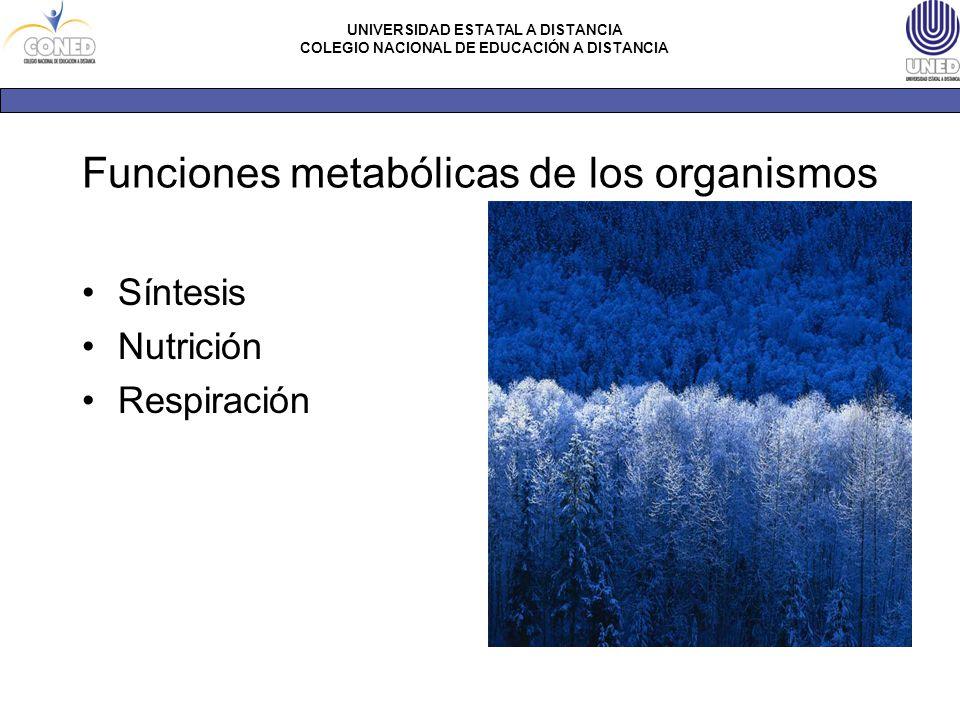 Funciones metabólicas de los organismos