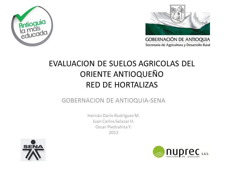 EVALUACION DE SUELOS AGRICOLAS DEL ORIENTE ANTIOQUEÑO RED DE HORTALIZAS