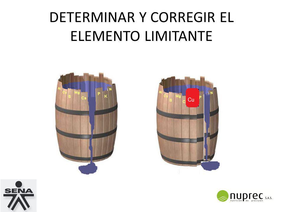 DETERMINAR Y CORREGIR EL ELEMENTO LIMITANTE