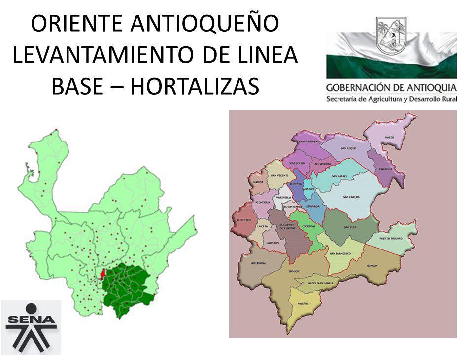 ORIENTE ANTIOQUEÑO LEVANTAMIENTO DE LINEA BASE – HORTALIZAS