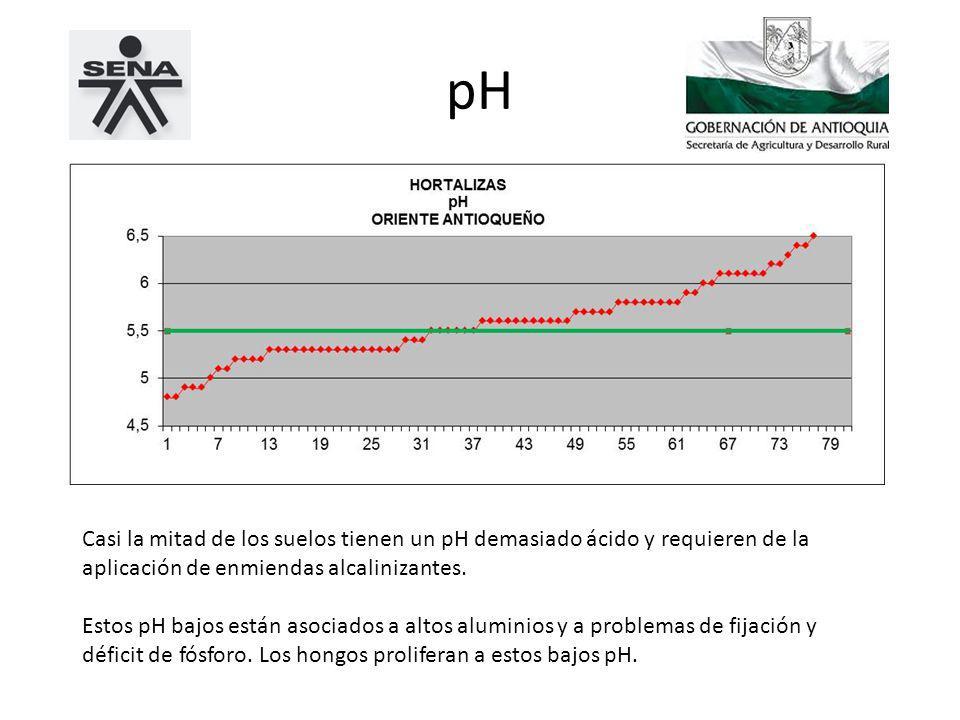 pH Casi la mitad de los suelos tienen un pH demasiado ácido y requieren de la aplicación de enmiendas alcalinizantes.