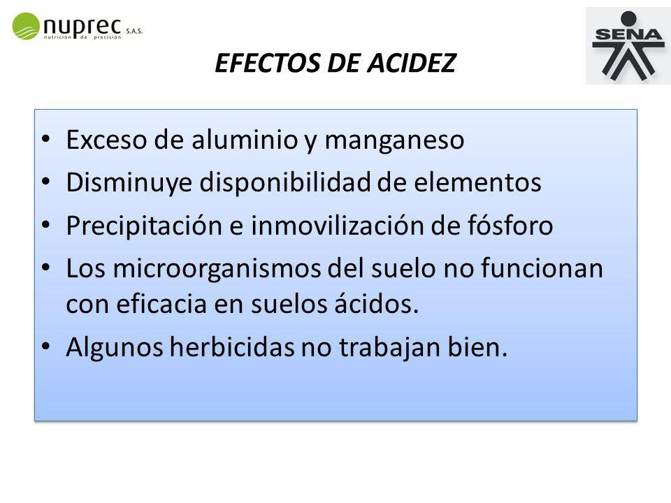 EFECTOS DE ACIDEZ Exceso de aluminio y manganeso. Disminuye disponibilidad de elementos. Precipitación e inmovilización de fósforo.