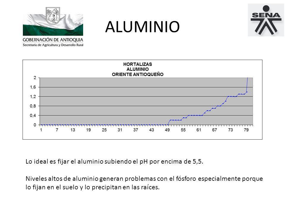 ALUMINIO Lo ideal es fijar el aluminio subiendo el pH por encima de 5,5.