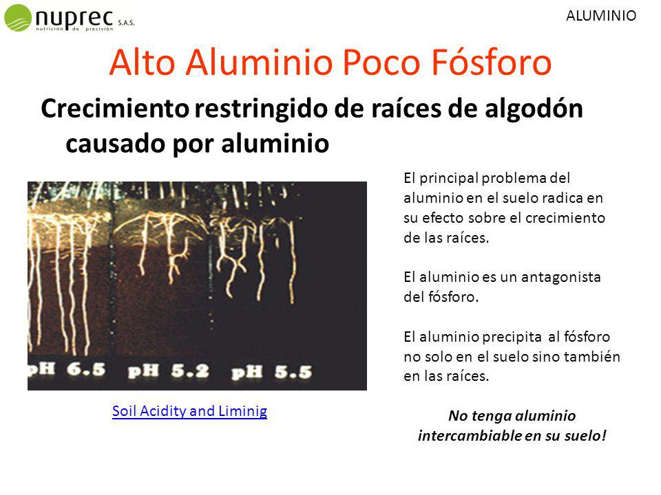Alto Aluminio Poco Fósforo