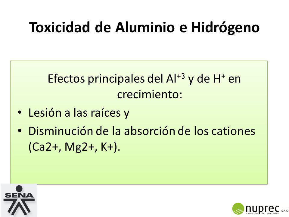 Toxicidad de Aluminio e Hidrógeno