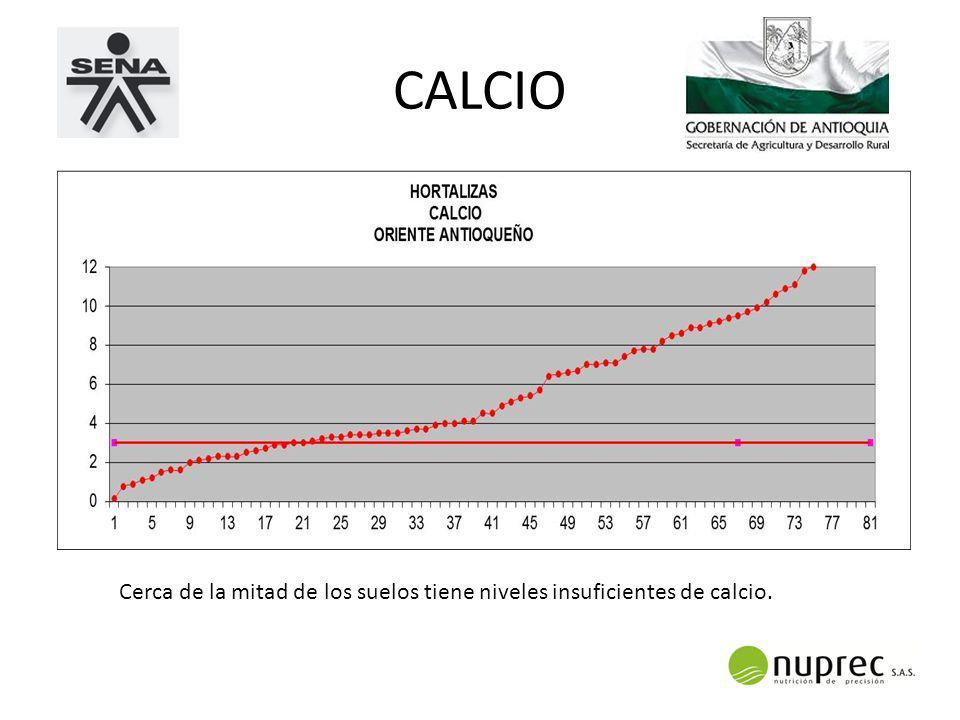 CALCIO Cerca de la mitad de los suelos tiene niveles insuficientes de calcio.