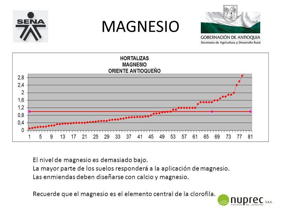 MAGNESIO El nivel de magnesio es demasiado bajo.
