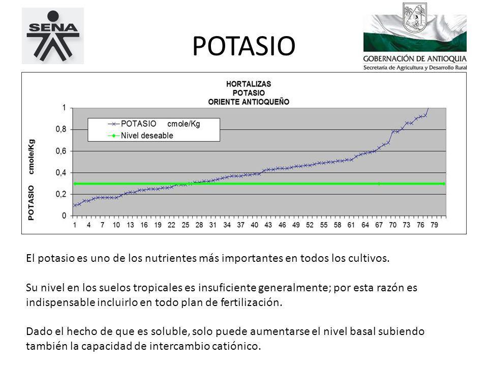 POTASIO El potasio es uno de los nutrientes más importantes en todos los cultivos.