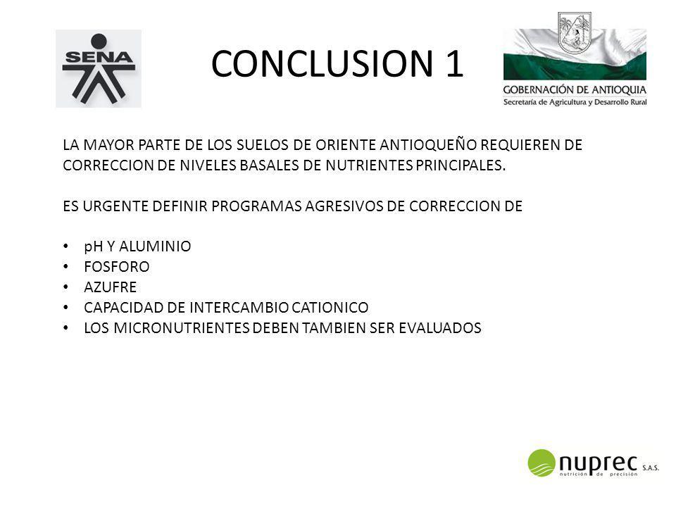 CONCLUSION 1 LA MAYOR PARTE DE LOS SUELOS DE ORIENTE ANTIOQUEÑO REQUIEREN DE CORRECCION DE NIVELES BASALES DE NUTRIENTES PRINCIPALES.