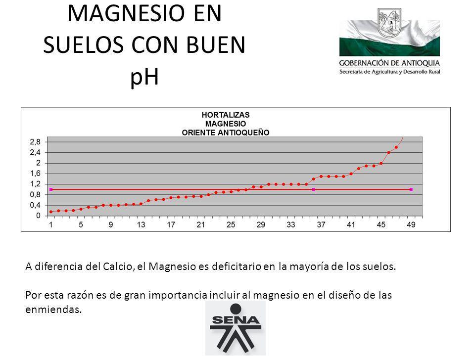 MAGNESIO EN SUELOS CON BUEN pH