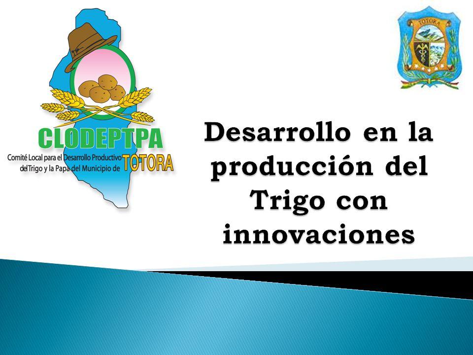 Desarrollo en la producción del Trigo con innovaciones