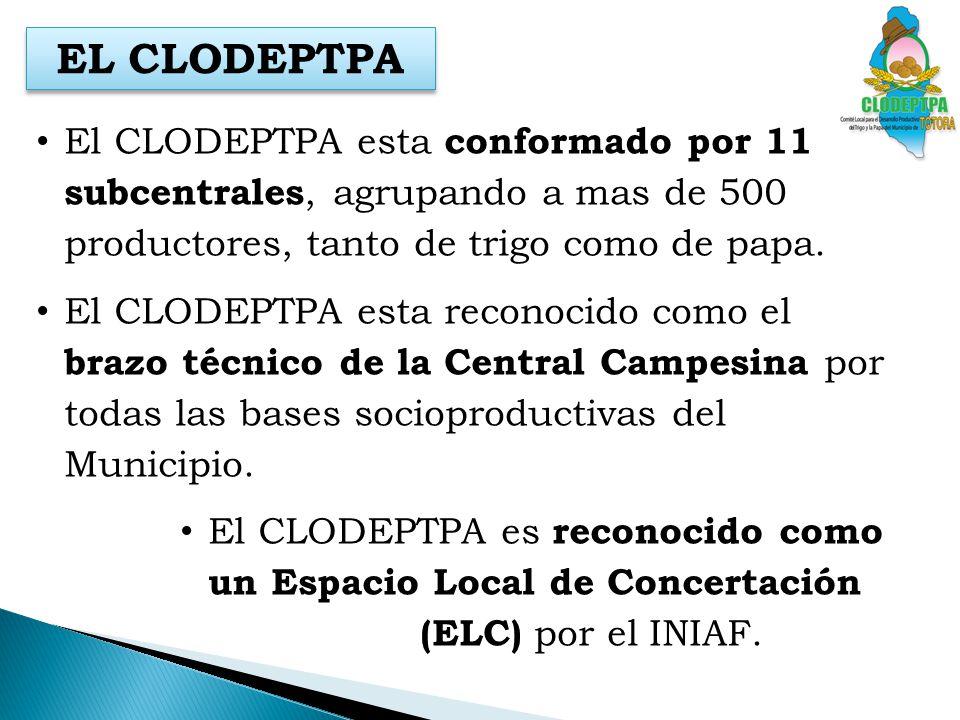 EL CLODEPTPA El CLODEPTPA esta conformado por 11 subcentrales, agrupando a mas de 500 productores, tanto de trigo como de papa.