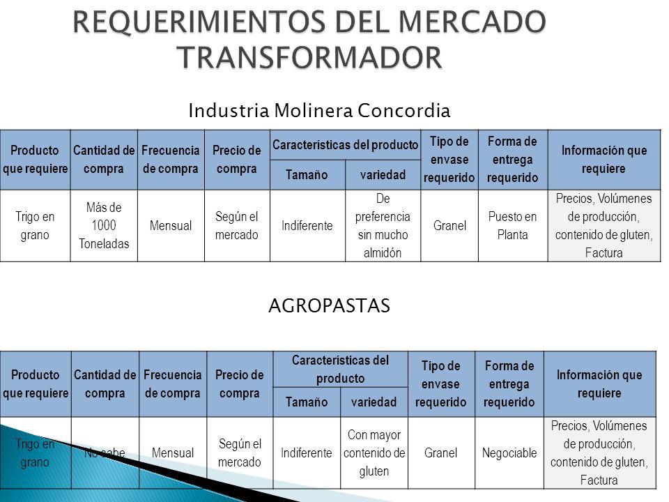 REQUERIMIENTOS DEL MERCADO TRANSFORMADOR