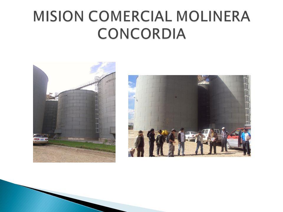 MISION COMERCIAL MOLINERA CONCORDIA