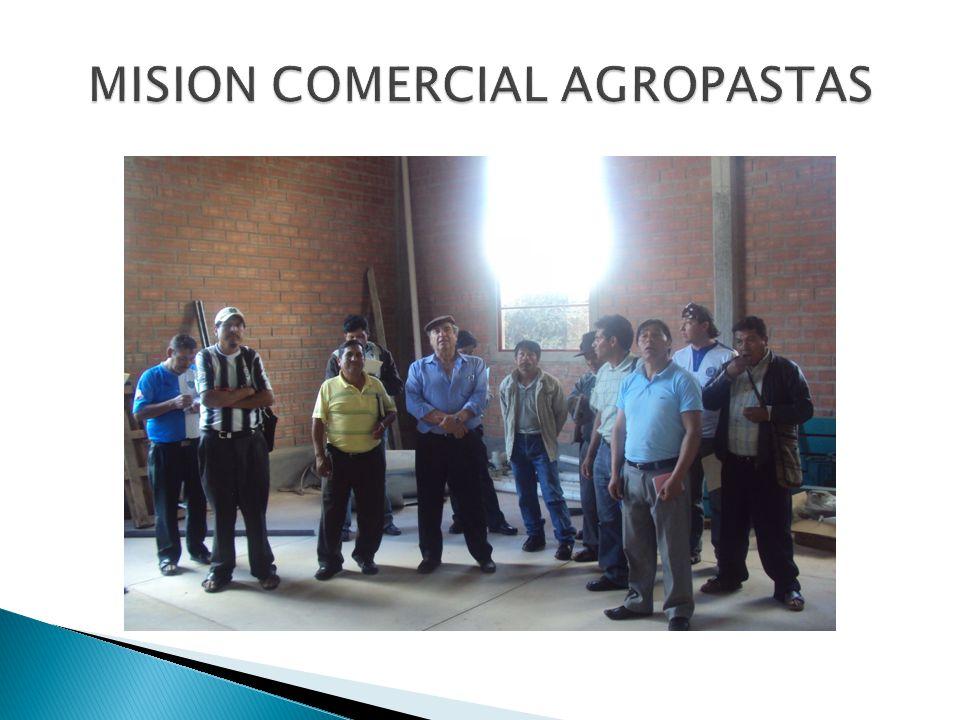 MISION COMERCIAL AGROPASTAS