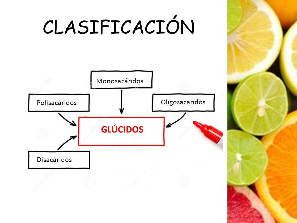 CLASIFICACIÓN Monosacáridos Polisacáridos Oligosácaridos GLÚCIDOS