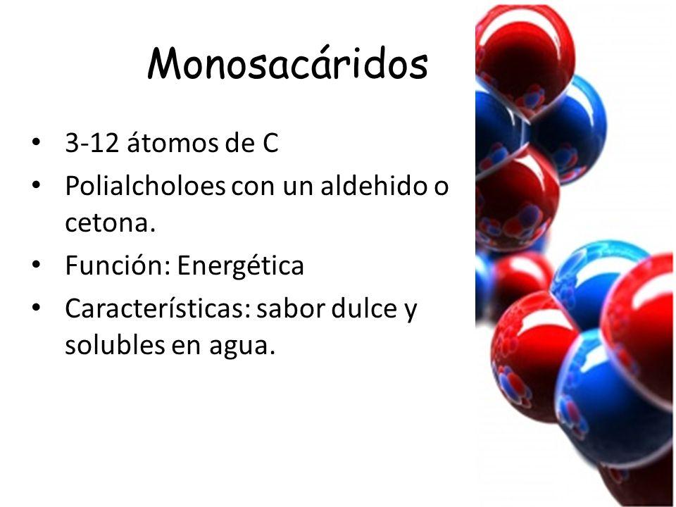 Monosacáridos 3-12 átomos de C Polialcholoes con un aldehido o cetona.